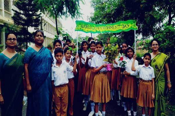 Plantation was organised at Maharishi Vidya Mandir Silchar, Assam on Environment Day. Principals, Teachers, Staff and Students have participated in an awareness rally and enjoyed plantation.